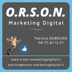 Logo Orson facebook internet