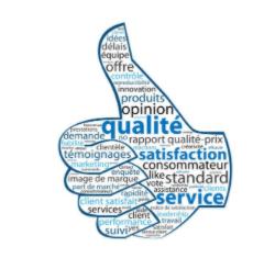 Satisfaction client en marketing